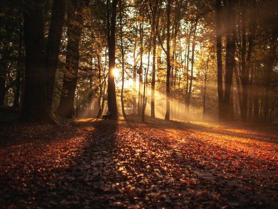Esperienze outdoor in autunno
