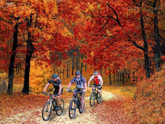 Skouty box - Foliage 2019 con ciclisti