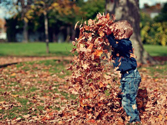 bambino che gioca con le foglie autunno